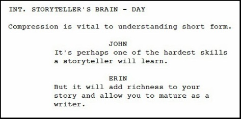 storysci.com screenshot image of screenplay about storytelling compression in part 2 of 3-article series